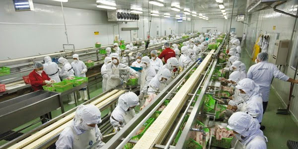 carrera-de-industrias-alimentarias
